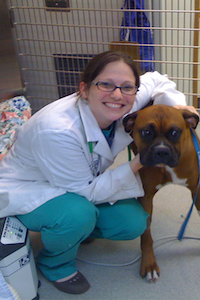 Dr. Jodi Gershman of Dumfries Animal Hospital - Dumfries Virginia